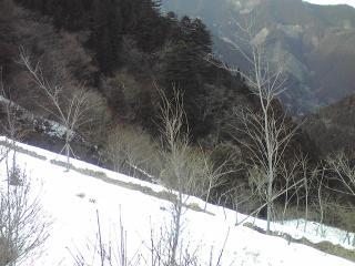 ST330019.JPG