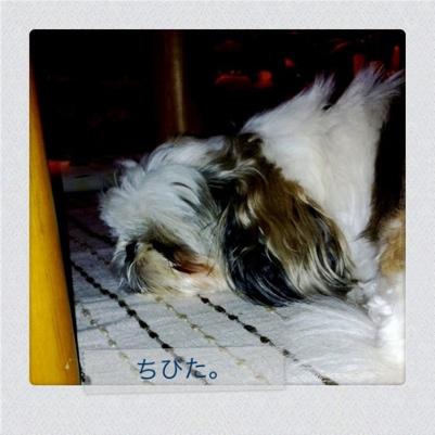 20110620-010727.jpg