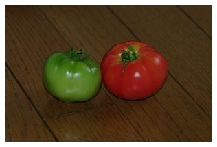 サマーキッスと大型福寿トマトの実